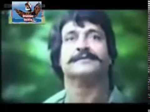 Chaudhary Badshah Pakistani Full Movie | Best Of Sultan Rahi-Rambo-Reema