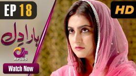 Haara Dil – Episode 18 | Aplus Dramas | Danish Taimoor, Hiba Bukhari | Pakistani Drama