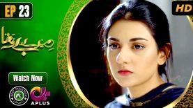 Pakistani Drama | Mere Bewafa – Episode 23 | Aplus Dramas | Agha Ali, Sarah Khan, Zhalay