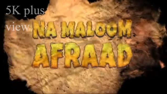 Na Maloom Afraad Full Hindi Movie