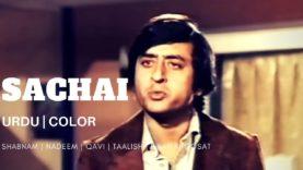 SACHAI (Urd) Shabnam, Nadeem, Qavi, Alauddin, Irfan Khoosat | BVC PAKISTANI