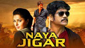 नागार्जुना और भूमिका चावला की सुपरहिट हिंदी फिल्म नया जिगर   साउथ की धमाकेदार मूवी