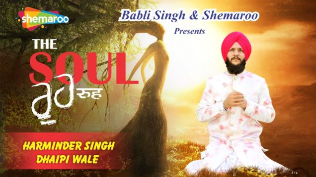Rooh The Soul | Harminder Singh Dhaipi । Soul Of Man | Gurpreet Sekhon | New Punjabi songs 2020