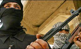 واشنگٹن : امریکی یوٹیلٹی پلانٹس پر دہشت گرد حملے کا خطرہ
