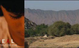 پاکستانی مختصر فلم ہیل کے انٹرنیشنل فلم فیسٹول میں چار ایوارڈز