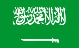 سعودی وزیرداخلہ کے گھر کے قریب فائرنگ، ملزم ہلاک