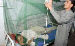 ملک بھر میں چار سو تیرہ افراد میں ڈینگی کی تصدیق