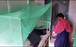لاہور : سولہ سالہ لڑکی ڈینگی سے جاں بحق