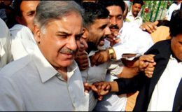 وزیر اعلیٰ پنجاب کی ڈینگی سے متاثرہ مریضوں کی عیادت