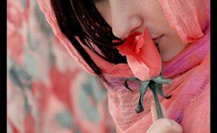 کوئی پھول دھوپ کی پتیوں میں