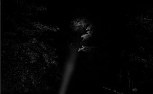 اتریں عجیب روشنیاں، رات خواب میں