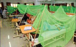کراچی : مزید 3 افراد ڈینگی وائرس کا شکار