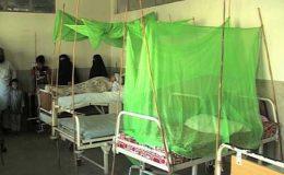 کراچی: مزید 3 افراد میں ڈینگی وائرس کی تصدیق، متاثرین کی تعداد 180 ہو گئی