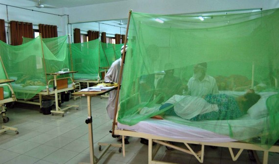 لاہور : میوہسپتال میں2 مزید ڈینگی کے کیسز سامنے آ گئے