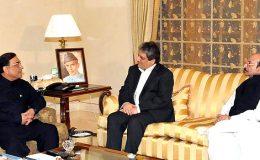 صدر زرداری سے گورنر اور وزیراعلی سندھ کی ملاقاتیں