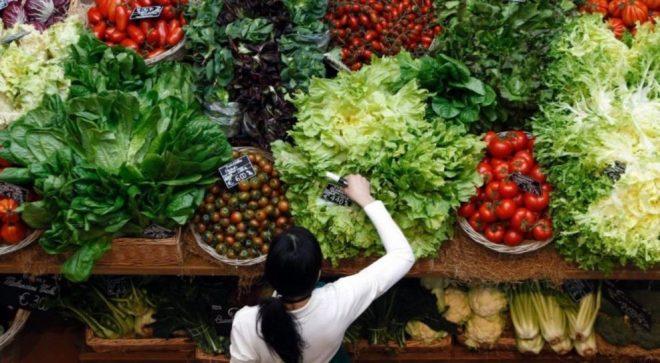 اٹلی : بچوں کو نباتاتی غذا کھلانے پر والدین کو قید