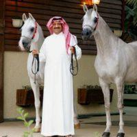 Arabic Prince Like Horse