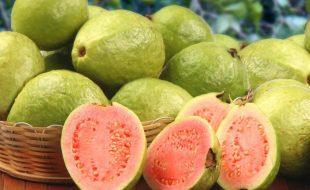 امرود بلڈ پریشر میں کمی کے لیے معاون