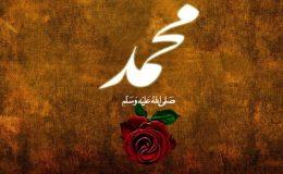حسن محمد ﷺ کا عیاں ہوتا ہے