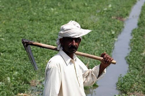 پنجاب کے کسان۔۔تبدیلی کے منتظر