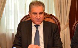 کچھ قوتیں پاکستان میں استحکام نہیں دیکھنا چاہتیں، شاہ محمود قریشی