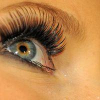 Artificial Eyelids
