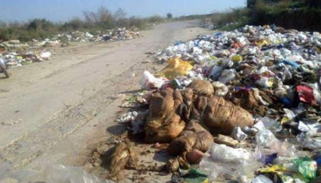 کراچی: شہر کے کئی علاقوں سے آلائشیں تاحال نہ اٹھائی جا سکیں