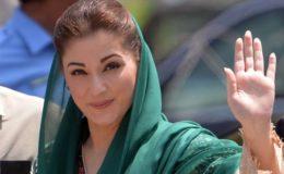 مریم نواز (ن) لیگ کی نائب صدر برقرار، پی ٹی آئی کی درخواست مسترد