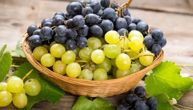 طبی نبویﷺ کے مطابق انگور کے فوائد