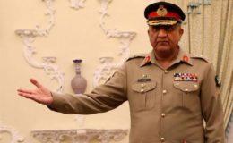پاکستان دہشتگردی کیخلاف جنگ کی فرنٹ لائن پر ہے: آرمی چیف
