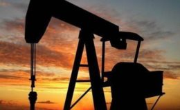خام تیل اور پیٹرول کی درآمد پر عائد پابندی ختم کر دی گئی