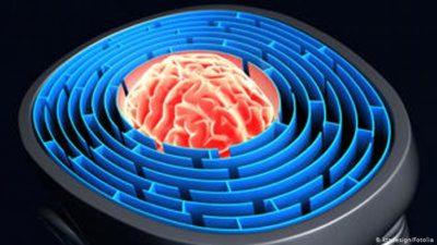 Gehirn Labyrinth