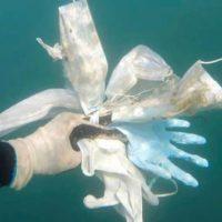 Masks Gloves