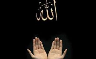 اللہ کے لئے کیا کیا؟
