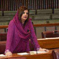 Dr Saima Nadeem