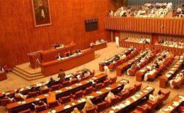 ایف اے ٹی ایف سے متعلق قومی اسمبلی سے منظور ہونیوالا بل سینیٹ میں مسترد