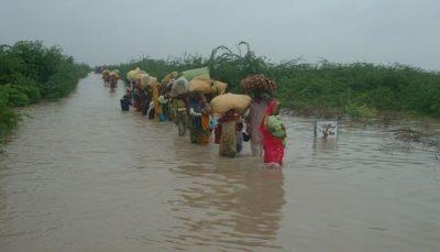 Sindh Punjab Rains