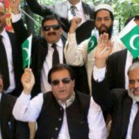 Jamil Faizi Advocate