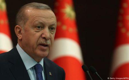 ترک صدر کا کارٹون، قانونی اور سفارتی اقدامات کا فیصلہ