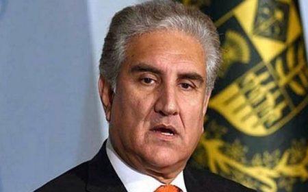 شاہ محمود نے اماراتی وزیر کے سامنے پاکستانیوں کے ویزہ کا معاملہ اٹھا دیا