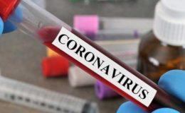 ملک میں مزید 1 ہزار 772 افراد میں کورونا کی تشخیص