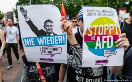 جرمن داخلی انٹیلیجنس نے اے ایف ڈی کی خفیہ نگرانی شروع کر دی