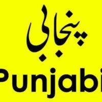 Punjabi Language