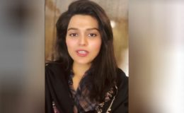 اداکارہ صوفیہ مرزا کے بچوں کے مبینہ اغوا اور بیرونِ ملک منتقلی کے کیس کی سماعت