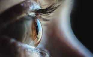 کائی میں موجود پروٹینز 20 سال سے نابینا شخص کی بینائی لوٹانے کا سبب بن گئے