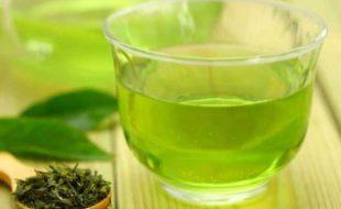 کورونا کے مرض میں سبز چائے مفید قرار