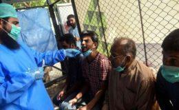 پاکستان: کورونا سے 76 اموات، مثبت کیسز کی شرح 3.1 ریکارڈ
