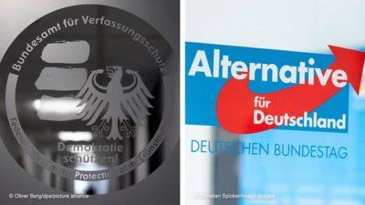 des BfV and der AfD