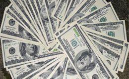 ملکی زرمبادلہ کے ذخائر 24 ارب ڈالر سے تجاوز کر گئے