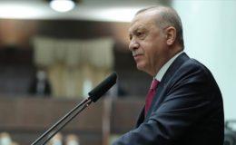 دہشت گرد تنظیم فیتو کے آخری رکن کو غیر فعال بنانے تک ان کا تعاقب کرتے رہیں گے: صدر ایردوان